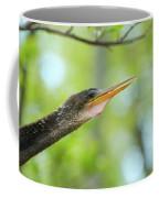 Anhinga Close-up Coffee Mug