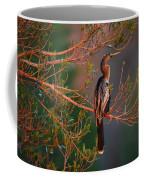 Anhinga Sunset Coffee Mug
