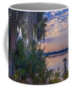 Anhinga's Paradise Coffee Mug