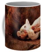 Animal - Cat - My Chew Toy Coffee Mug