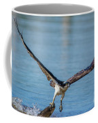Animal - Bird - Osprey Catching A Fish Coffee Mug