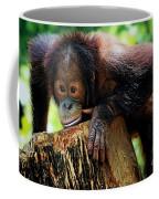 Animals 3 Coffee Mug