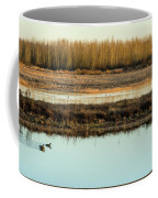 Ankeny Reflections Coffee Mug
