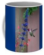 Anna's Hummingbird Feasting At Blue Salvia Coffee Mug