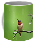 Another Rainy Day Hummingbird Coffee Mug