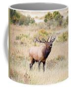 Answering The Challenge Coffee Mug