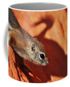 Antelope Ground Squirrel II Coffee Mug