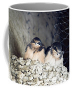 Antelope Island Birds Coffee Mug