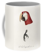 Antique Scarlet Macaw Illustration Coffee Mug