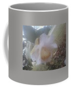 Antique White II Coffee Mug