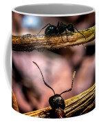 Ants Adventure Coffee Mug by Bob Orsillo