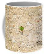 Ants At Oxtankah Coffee Mug