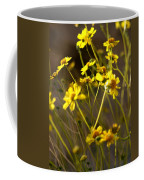 Anza Borrego Desert Sunflowers 1 Coffee Mug