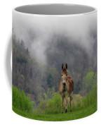 Appalachian Jackass Coffee Mug