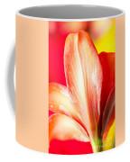 Apple Amaryllis Red Apple Amaryllis On A Pink And Yellow Background Coffee Mug