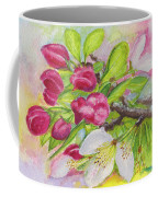 Apple Blossom Buds On A Greeting Card Coffee Mug