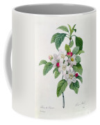 Apple Blossom Coffee Mug by Pierre Joseph Redoute