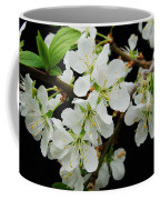 Apple Blossoms 3 Coffee Mug