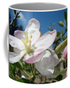 Apple Blossoms Art Prints Canvas Blue Sky Pink White Blossoms Coffee Mug