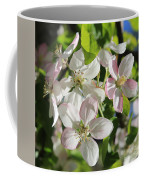 Apple Blossoms Square Coffee Mug