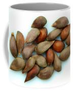 Apple Seeds Coffee Mug