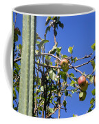 Apple Tree With Apples And Flowers. Amazing Nature Coffee Mug