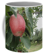 Apples 101010 Coffee Mug
