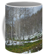 Approaching Spring In The Aspen Forest Coffee Mug by Cascade Colors