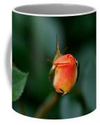 Apricot Rose Bud 2 Coffee Mug
