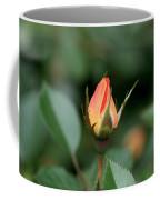 Apricot Rose Bud 3 Coffee Mug