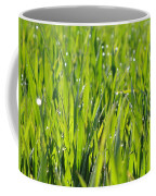 April Dewdrop Fairylights Coffee Mug