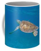 Aqua Glider Coffee Mug