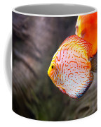 Aquarium Orange Spotted Fish Coffee Mug