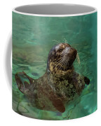 Aquarium Seal  Coffee Mug