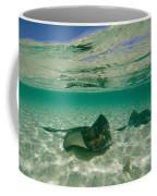 Aquatic Split-level View Of Two Coffee Mug by Wolcott Henry