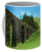Aqueduct Coffee Mug