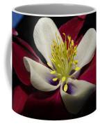 Aquilegia  Columbine Coffee Mug