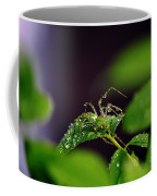 Arachnishower Coffee Mug