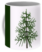 Araucaria Sp Tree Coffee Mug