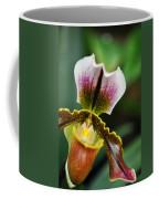 Arboretum Tropical House Orchid II Coffee Mug