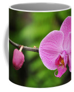 Arboretum Tropical House Orchid Coffee Mug