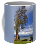 Arbutus Tree At Rathtrevor Beach British Columbia Coffee Mug