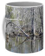 Arch And Reflections Coffee Mug