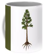 Archaeopteris Sp Tree Coffee Mug