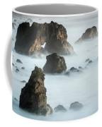 Arched Rock Sea Bird Coffee Mug