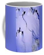 Arctic Fastness  Coffee Mug