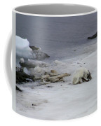 Arctic Fox Eating Coffee Mug