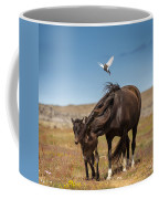 Arctic Tern Attacking Mare Coffee Mug