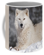 Arctic Wolf... Coffee Mug