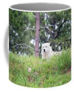 Arctive Wolf Lying Down Coffee Mug